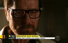 """Breaking Bad"" finale satisfies fans"