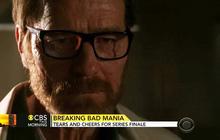 """Breaking Bad"" finale satisfies fans"