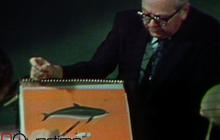 Funny '73 report on the US Navy's dolphins