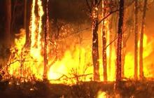 Wildfires burn through southern Australia