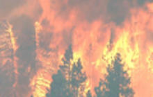 Wildfire threatens thousands near Calif. resort town