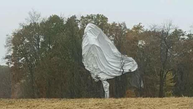 balloon-tree-photo.jpg