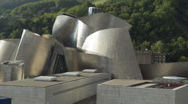 Biographer: Frank Gehry wants you to feel emotion through his work