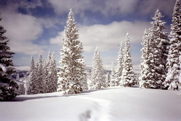 Property Taxes In Steamboat Springs Colorado