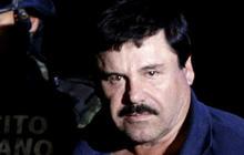 Dogs taste-test El Chapo's prison food