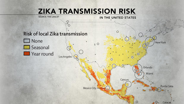 Local Health Experts Make Recommendations As Zika Virus Spreads