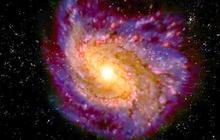 Gravitational waves predicted by Einstein detected