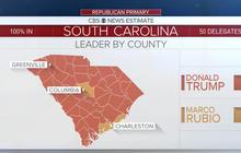How Donald Trump won in South Carolina