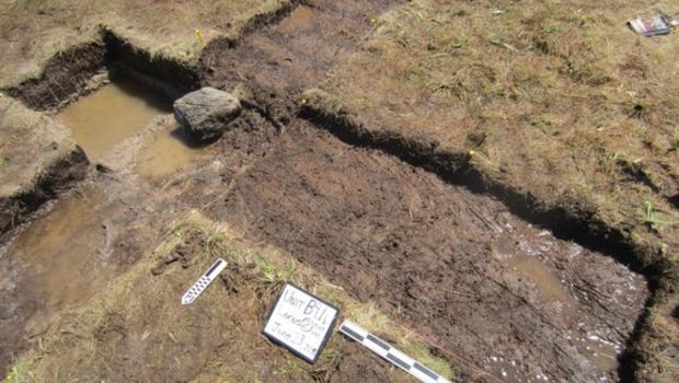Viking dating site