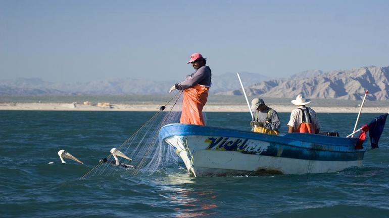 fishermen-9-chris-johnson.jpg