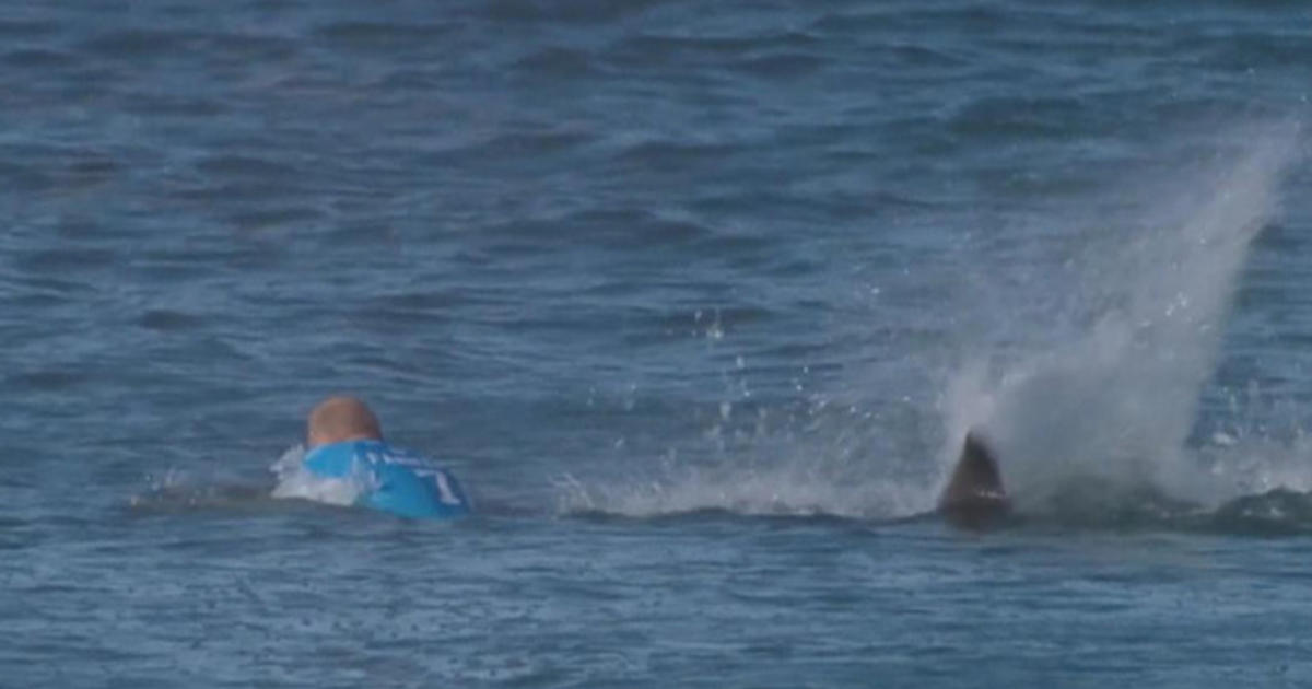 Mick Fanning after shark attack: Ill surf again for sure