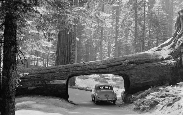 Vintage photos of the early days of our national parks