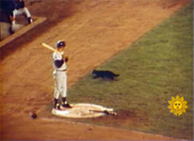 黑色的猫 - 箭牌场,1969-244.jpg