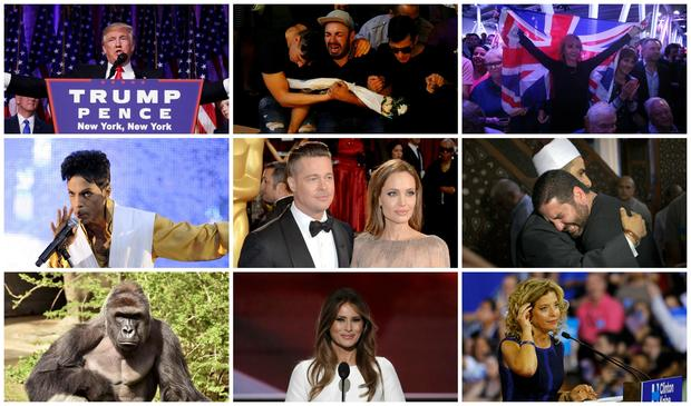 Most surprising stories of 2016