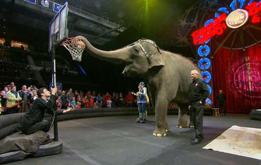 Ringling Bros. ends circus as ticket sales plunge