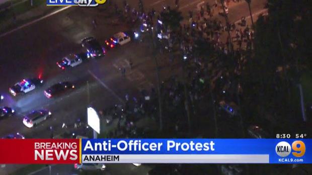 抗议者功能于anahediim-有限-OF-022217.jpg