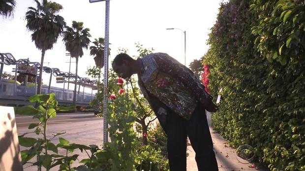 170409-EN-比利亚雷亚尔,黑帮,gardener01.jpg