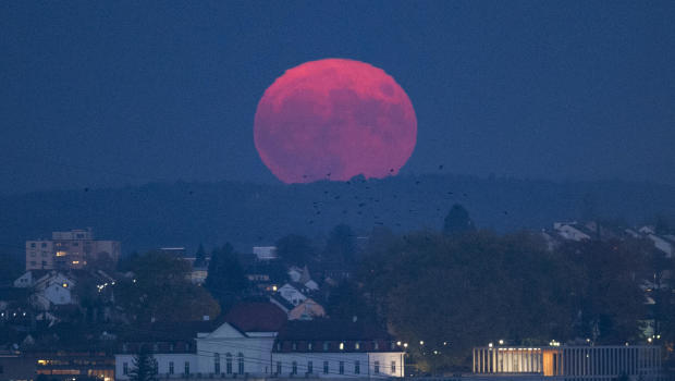 Look Up April 39 S Spectacular Pink Moon Rises This Week
