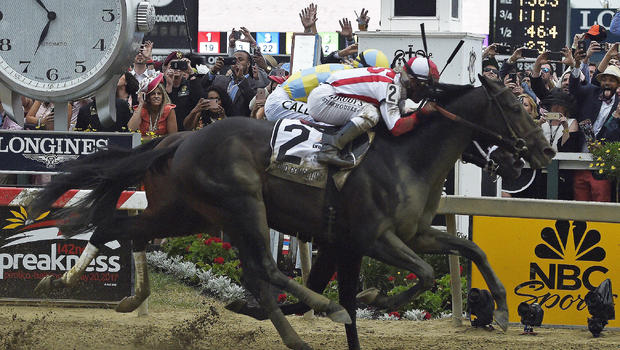 How Preakness Winner Cloud Computing Got His Nerdy Name