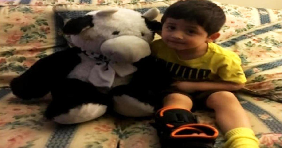 Stuffed Cow Breaks Boys Fall From Second Story Window