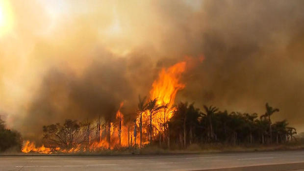 glor-加州火灾,2017-12-7.jpg