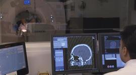 Scientists seek veterans