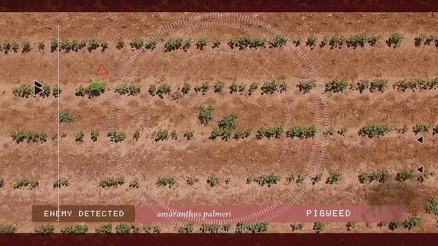 CTM-0424蓝江科技-AI-farming.jpg