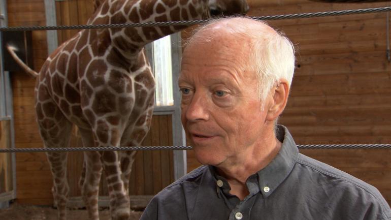 bengt-giraffe-intv.jpg