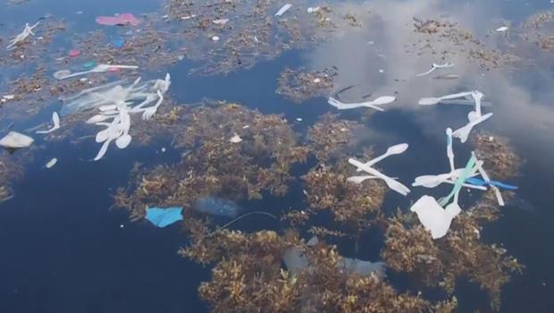 浮动垃圾岛离洪都拉斯-B-620.jpg