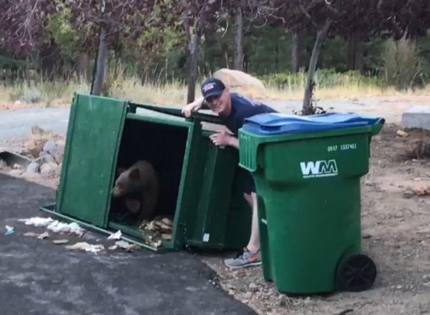 181002  - 熊 -  dumpster.png