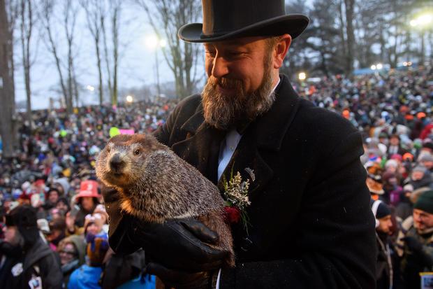 """""""Punxsutawney Phil""""在宾夕法尼亚州的年度土拨鼠日仪式中寻找他的影子"""