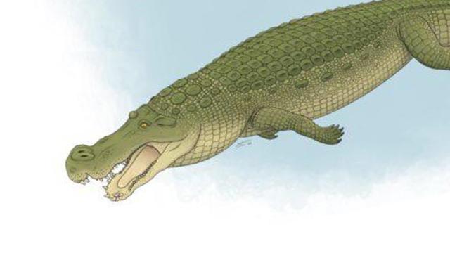 deinosuchusvertical-1-scaled.jpg