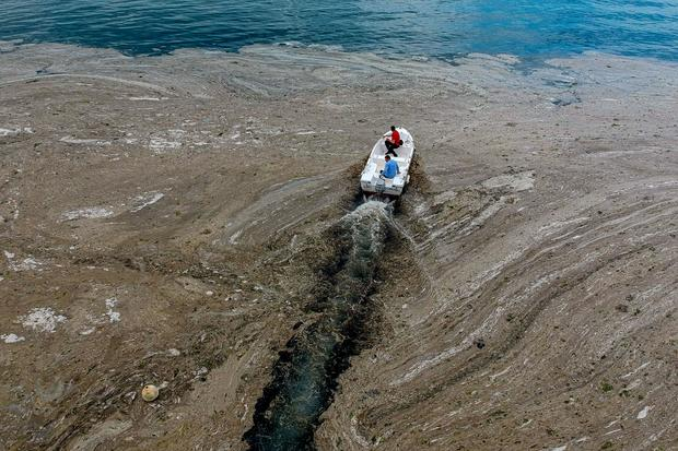 TOPSHOT-TURKEY-SEA-ENVIRONMENT