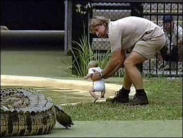 Croc Hunter I M No Jacko Cbs News