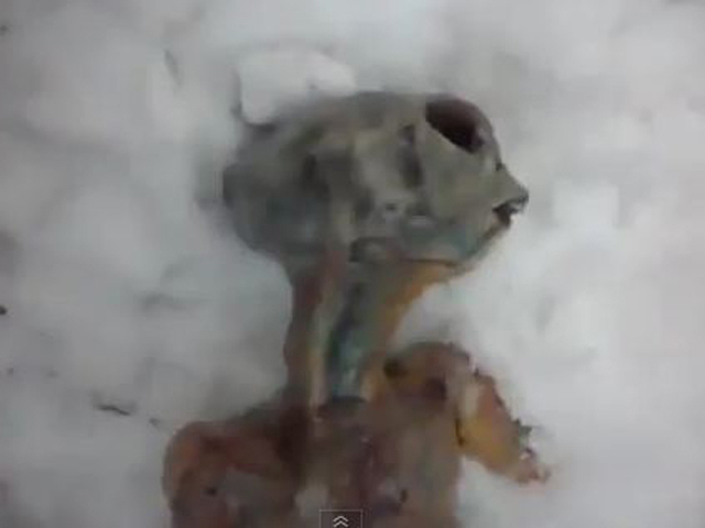 """Viral video of """"alien"""" in Siberia real? Nyet - CBS News"""