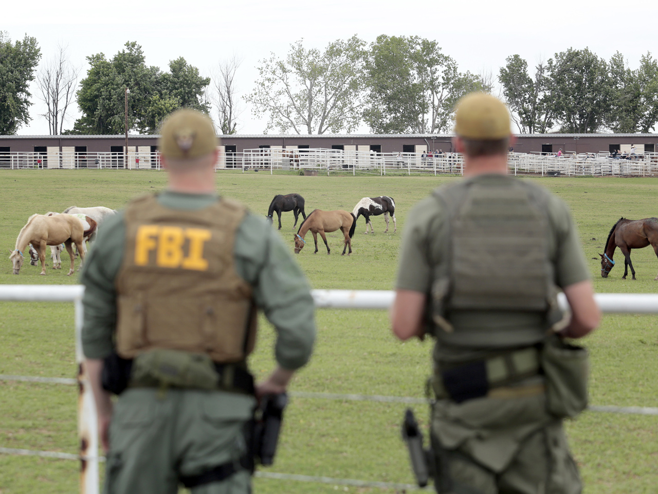 Okla  horse ranch raided for alleged cartel ties - CBS News