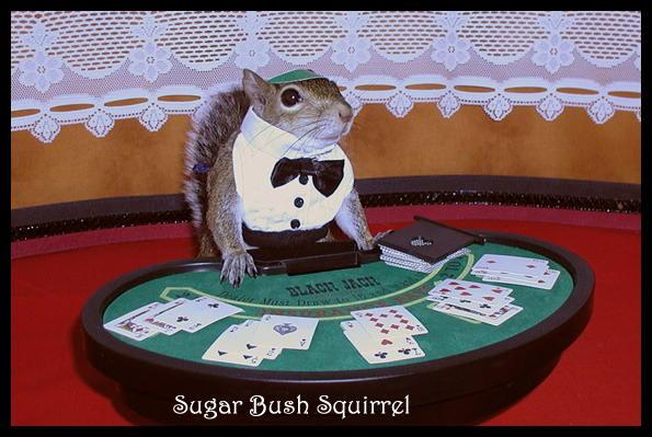 kartinki-pro-kazino-prikolnie
