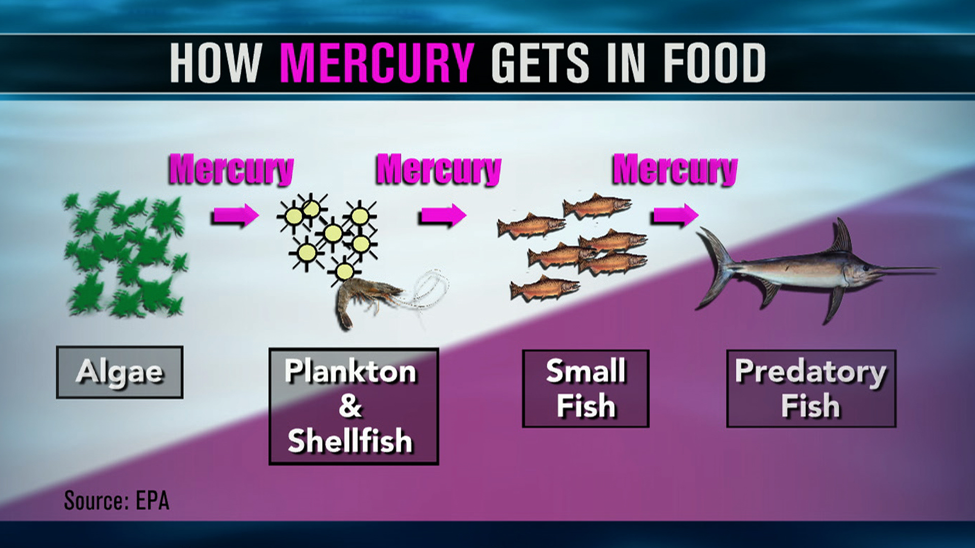 mercury pollution (natural news) with ongoing advisories about toxic fish and warnings to limit consumption, there is no doubt that mercury pollution is a serious problem in the great lakes.