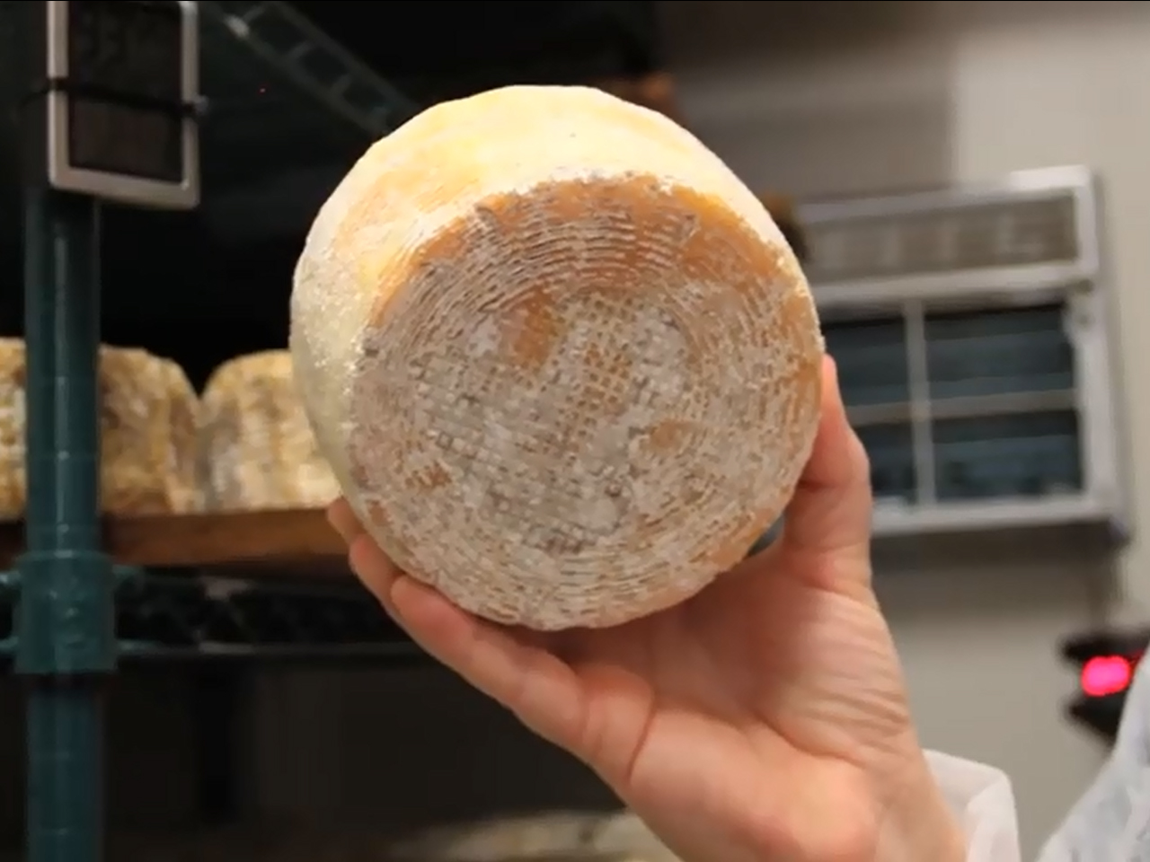 Scientists create cheese from human toe bacteria - CBS News