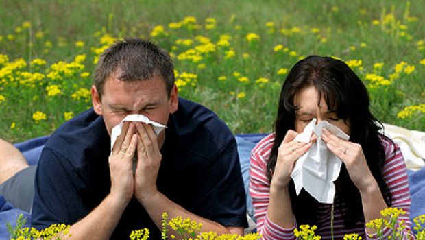 How to survive the seasonal allergy explosion - CBS News