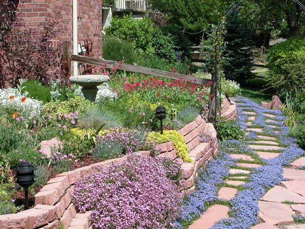 5 ways to create a grass free garden cbs news for Xeriscape garden designs