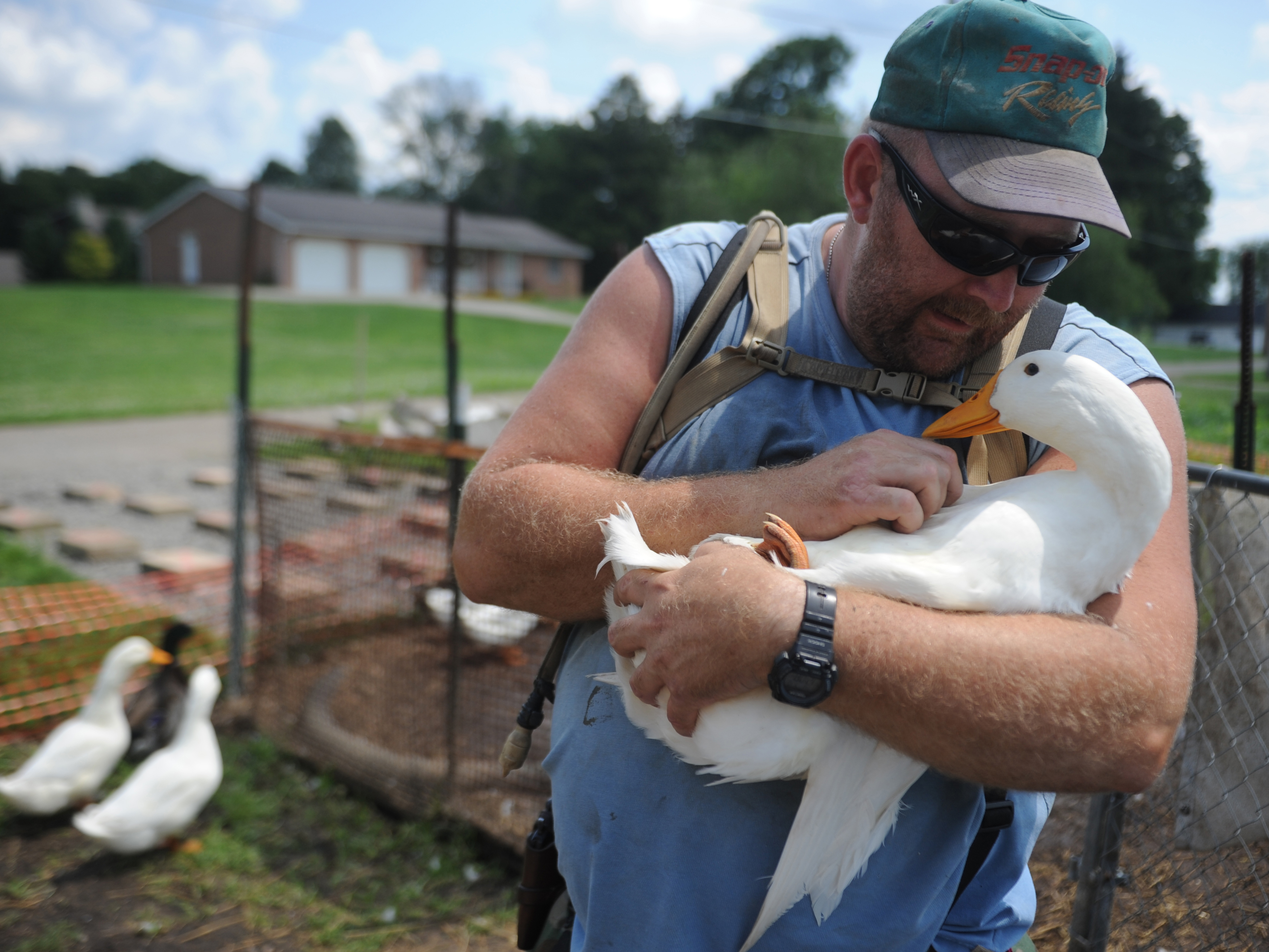 Iraq vet convicted for owning pet ducks to relieve PTSD - CBS News