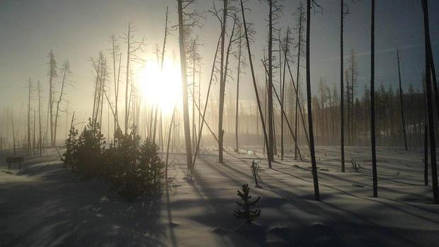 yellowstone-in-winter-620.jpg