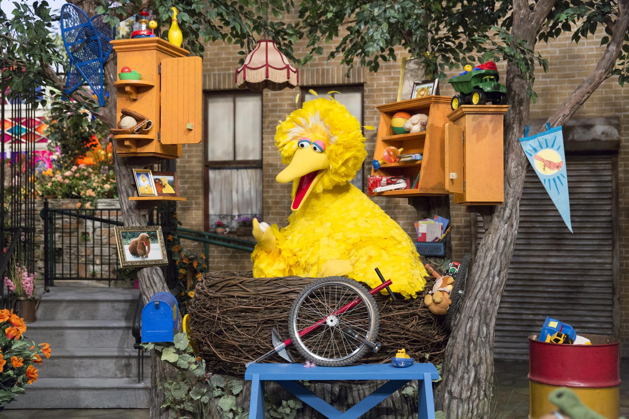 Picture of Sesame Street Orlando Big Bird