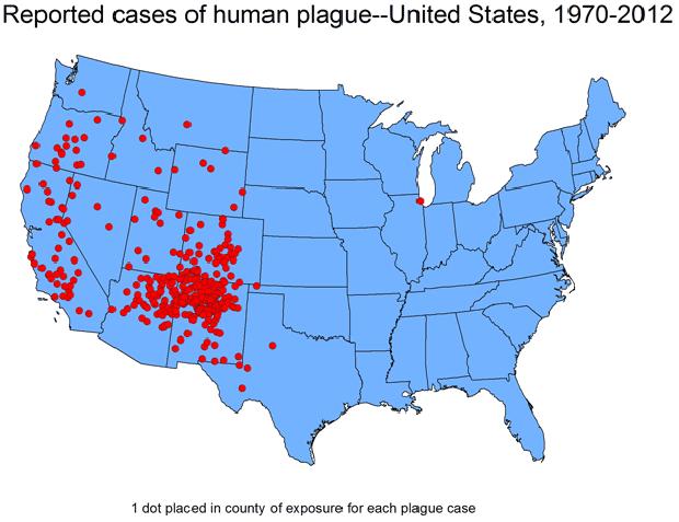 cdc-plague-map.png