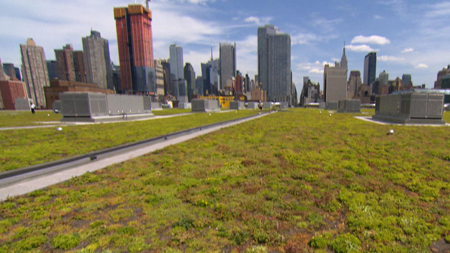 New York City Javits Center S Green Roof Cbs News
