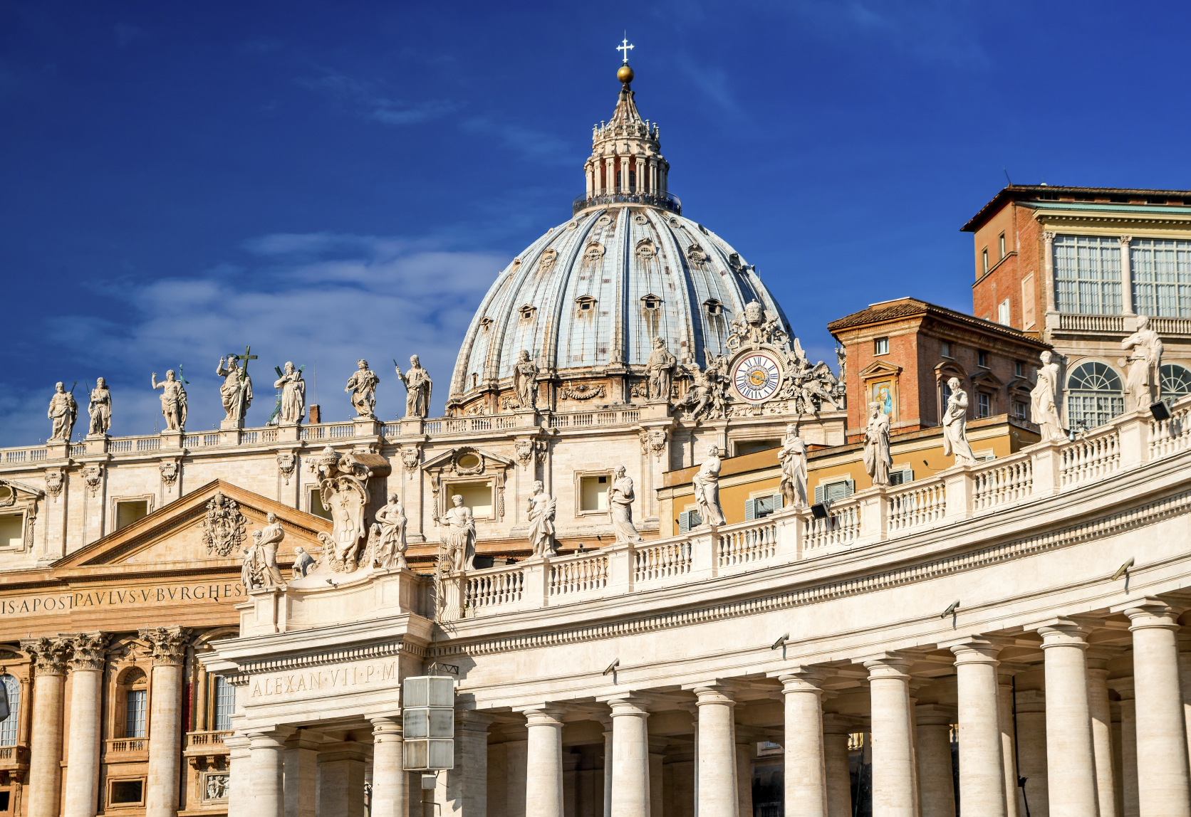 Vatican to host conference on stem cells, other regenerative