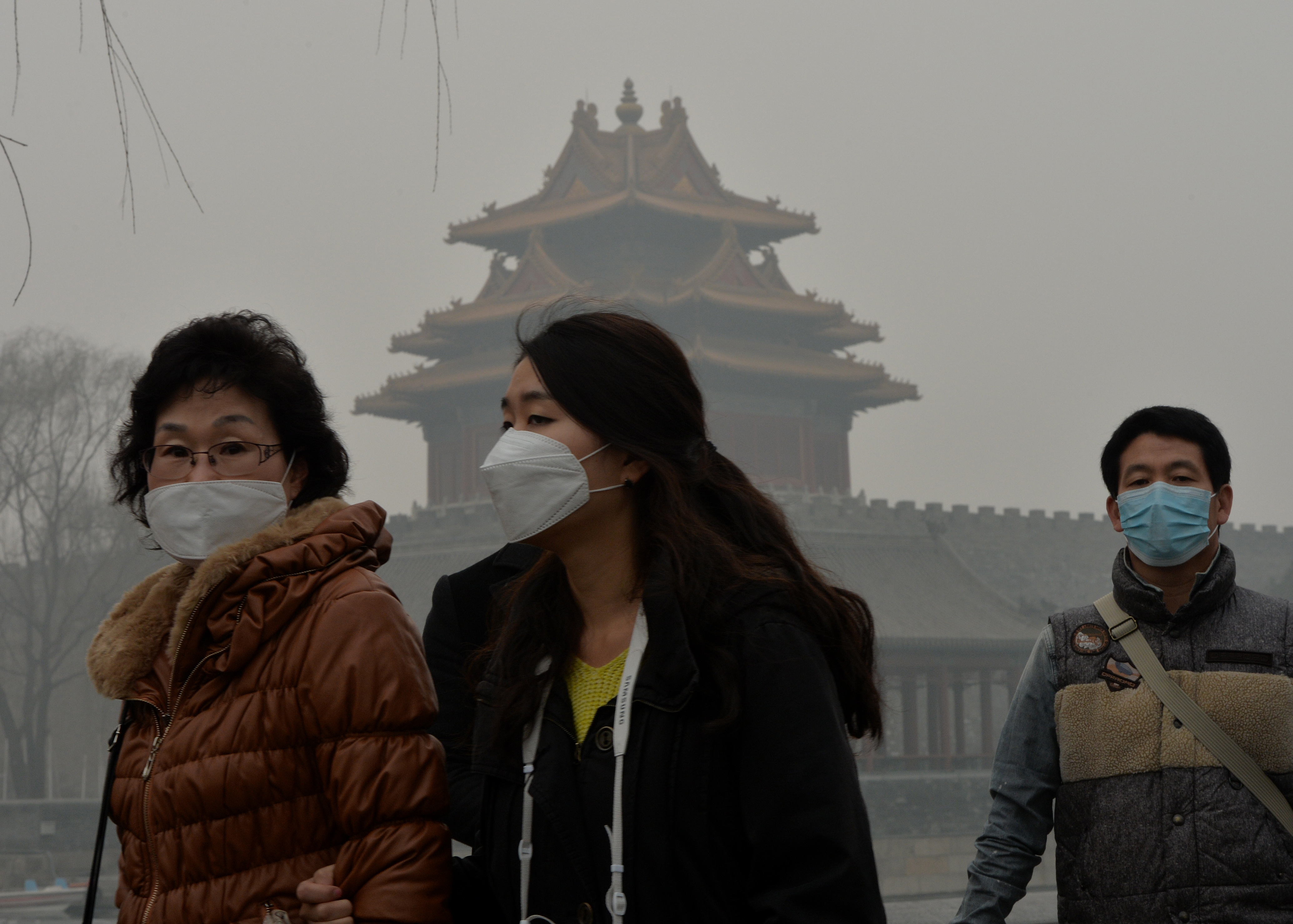 WHO 9 Out Of 10 People Breathing Excessive Air Pollution
