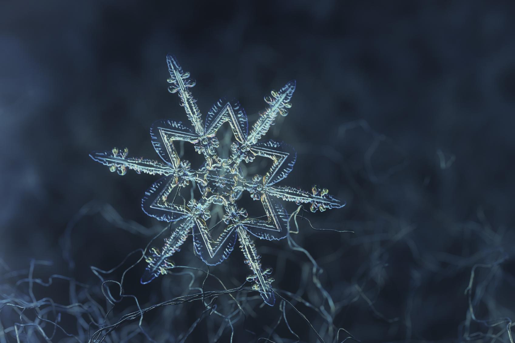 snowflake - photo #13