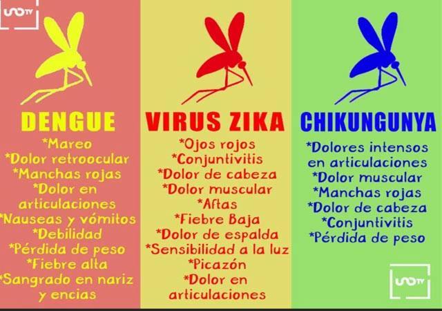 Resultado de imagen de sintomas de dengue zika y chikungunya